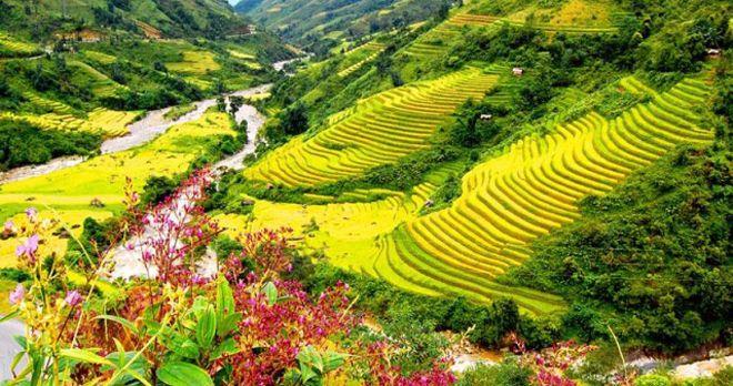 Thung lũng Mường Hoa ở Sapa